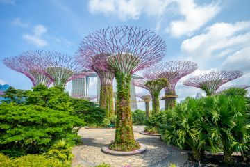 Landscape of Gardens by the Bay in Singapore